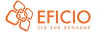 Les services d'un CIO expérimenté, selon vos besoins